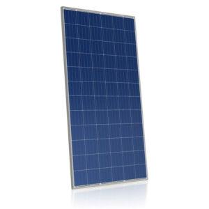 Canadian Solar CS6X-315P - Pallet